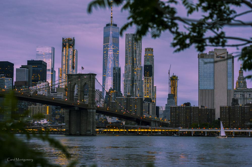 A Glipse of the City