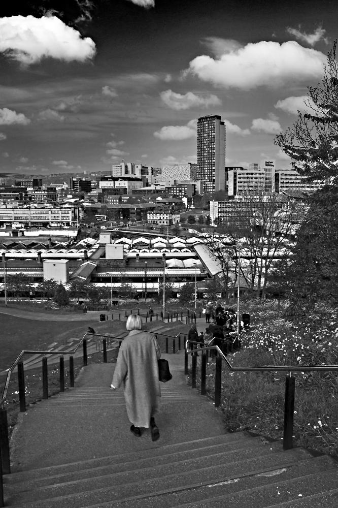 Sheffield's Urban Landscape 2