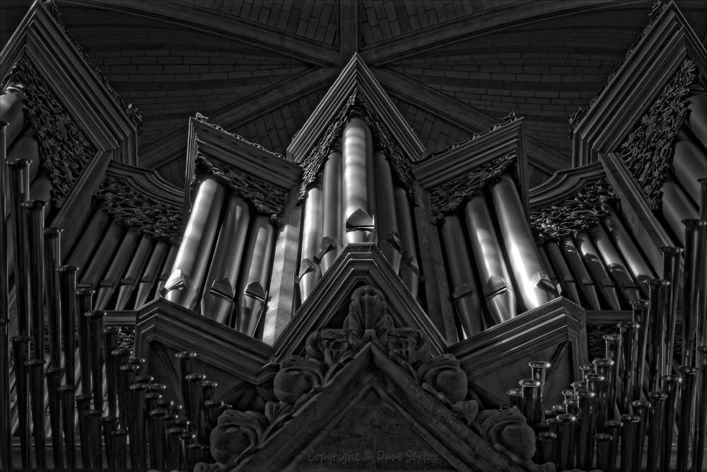 Monochrome Organ Pites