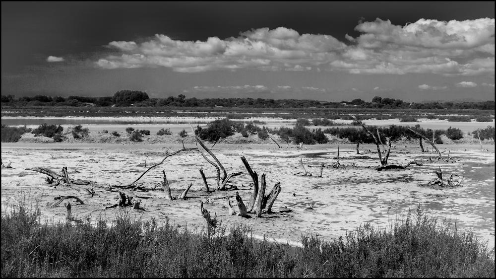 Ses Salinas Salt Flats