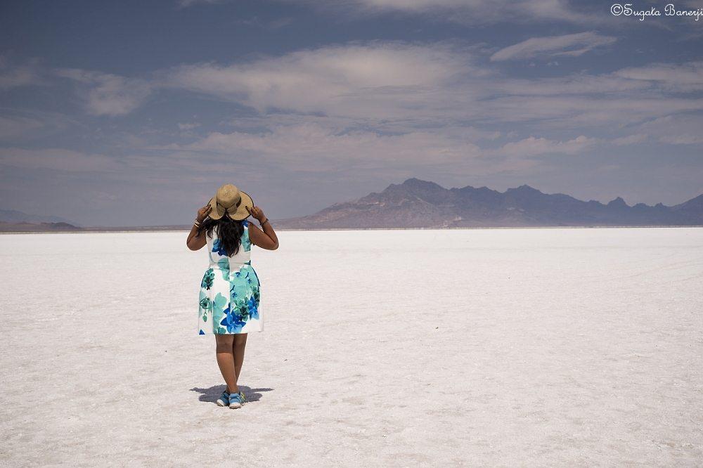 A World of Salt