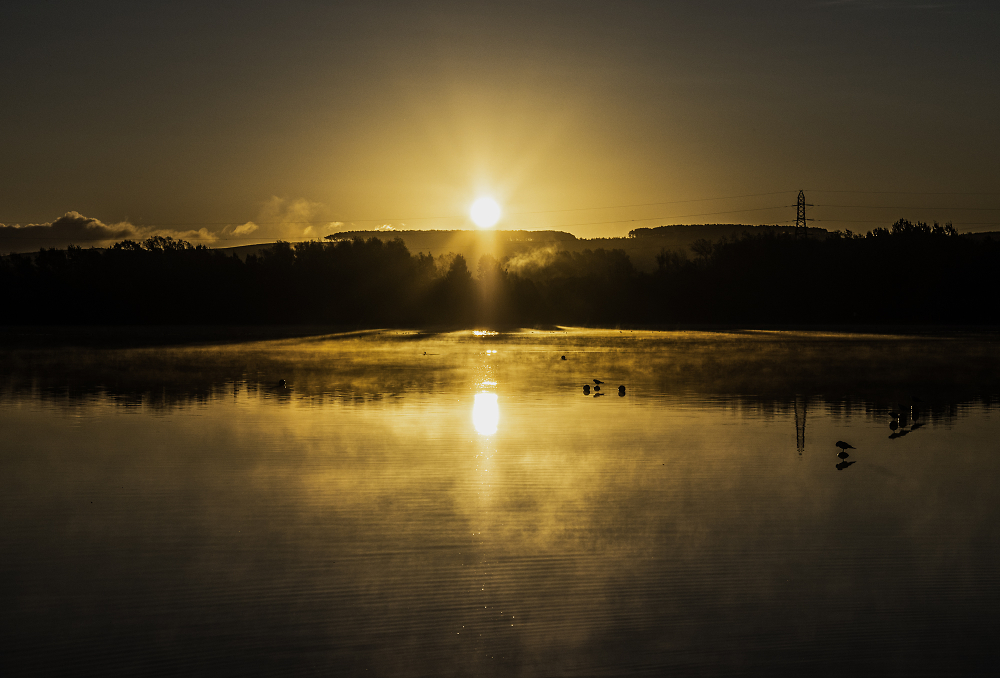 Morning sun on the lake
