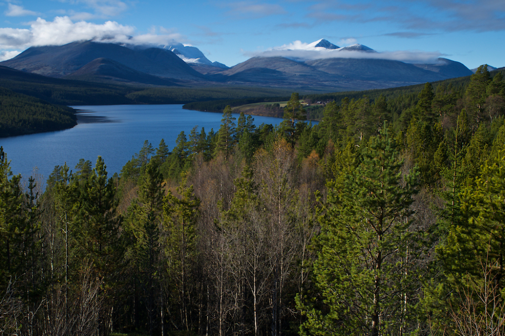 Rondane in Autumn