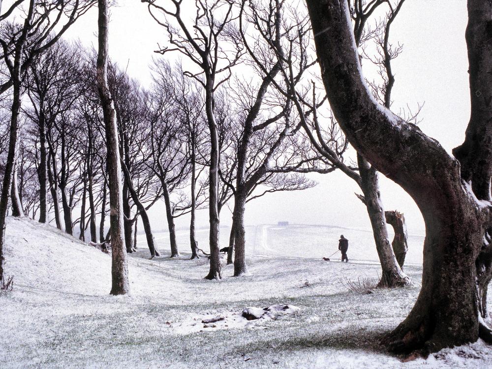 Winters'.walk