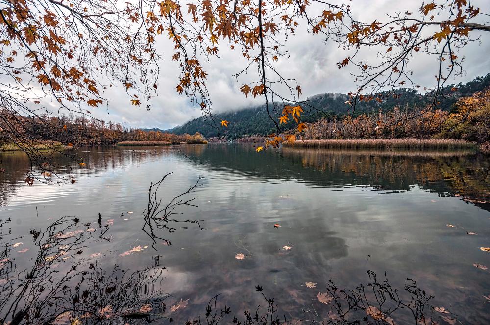 A Cove, Kovoda Lake
