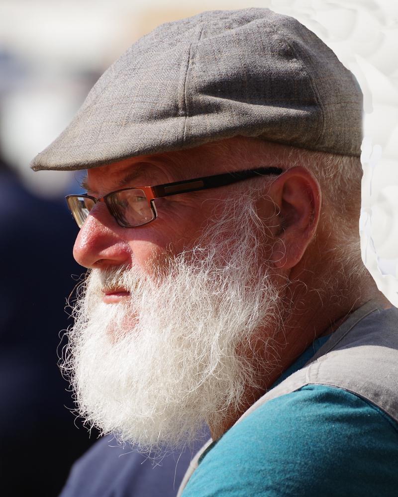 Mr Greybeard