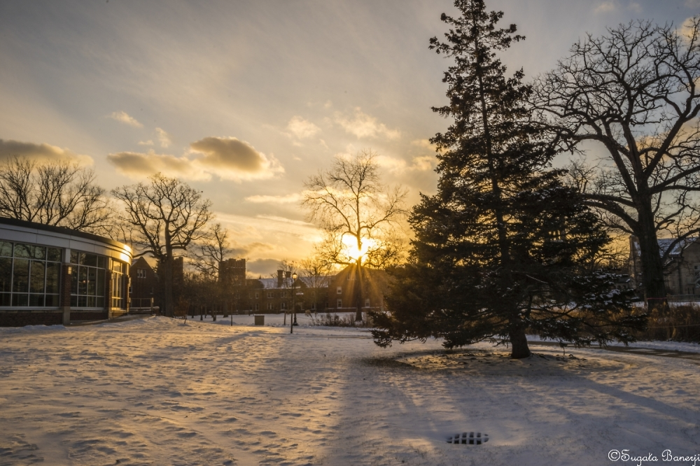 Winter Sunset (3)