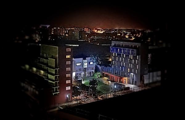 Nocturnal landscape