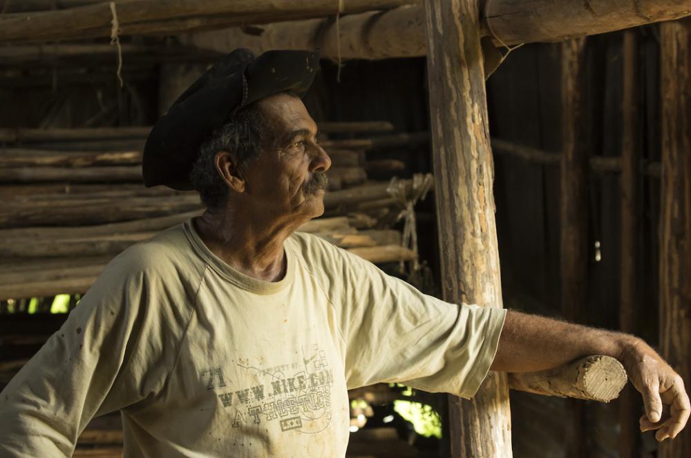 Cuban Tobacco grower in Vinales