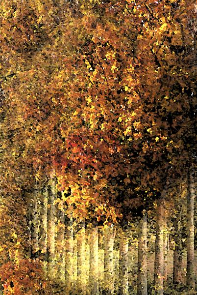 Autumn Gold - inspired by Klimt
