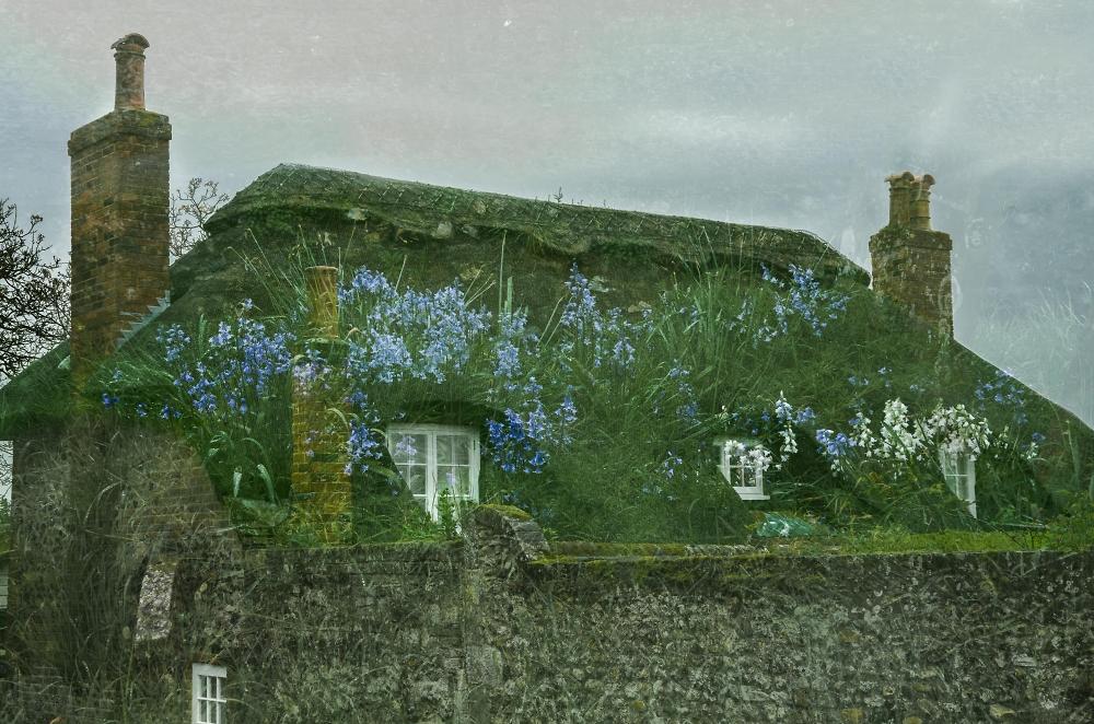 Blue Bell Cottage!