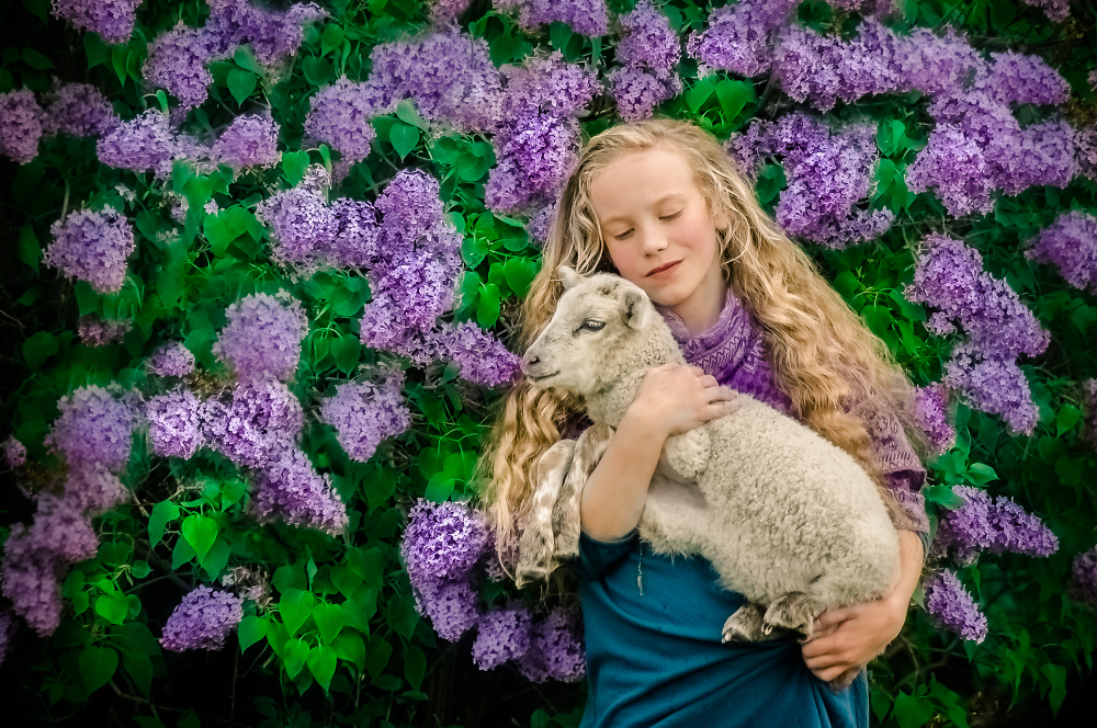 Nothing says Spring like Lambs and Lilacs.