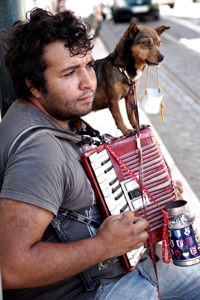 Man and dog at work (again)