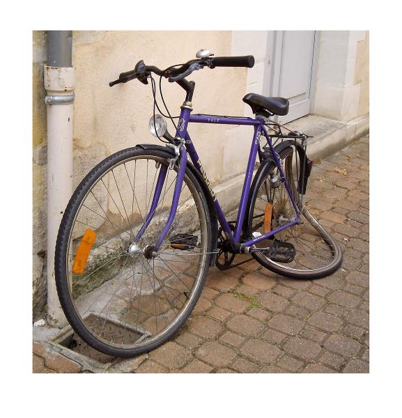Salvador's Dali bike ride!