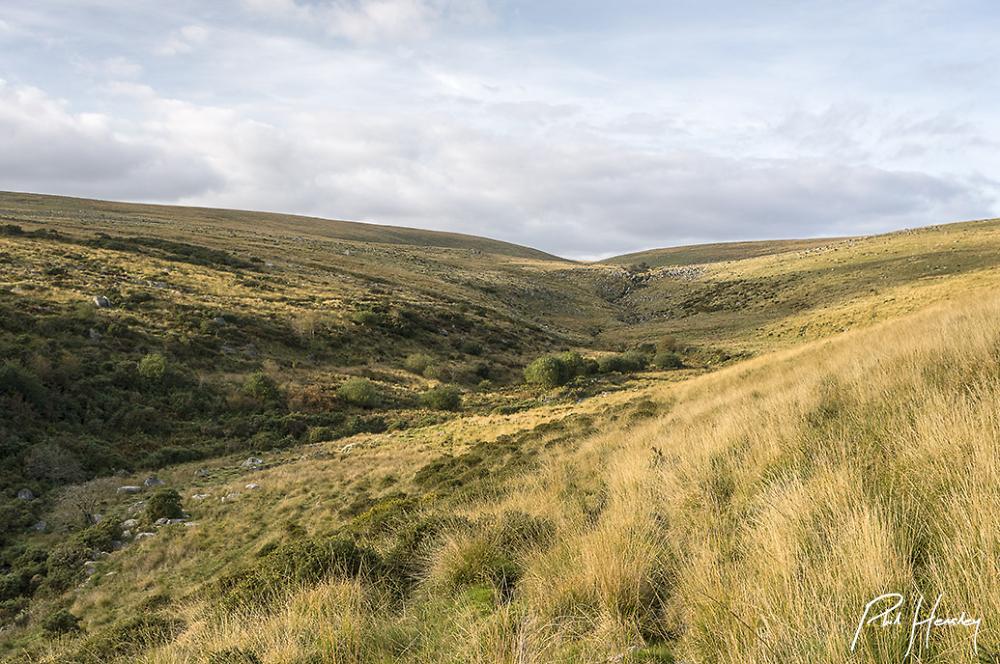 Stall Moor