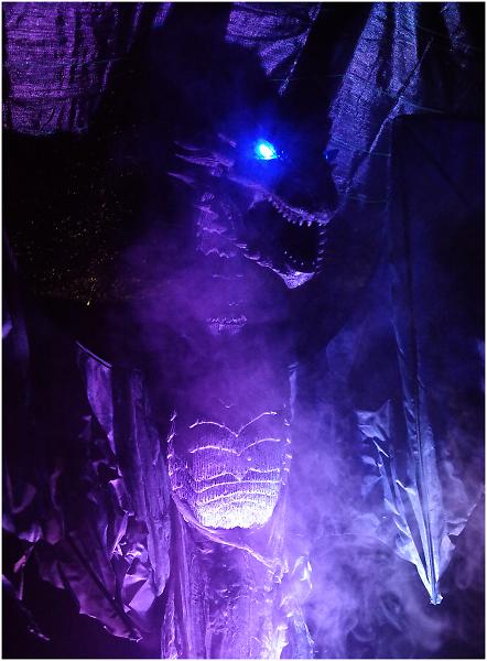 Dragon in the Dark