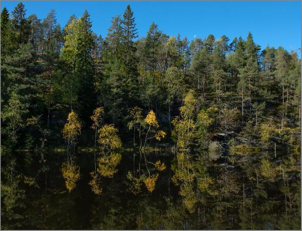 Tresticklan National Park, Sweden