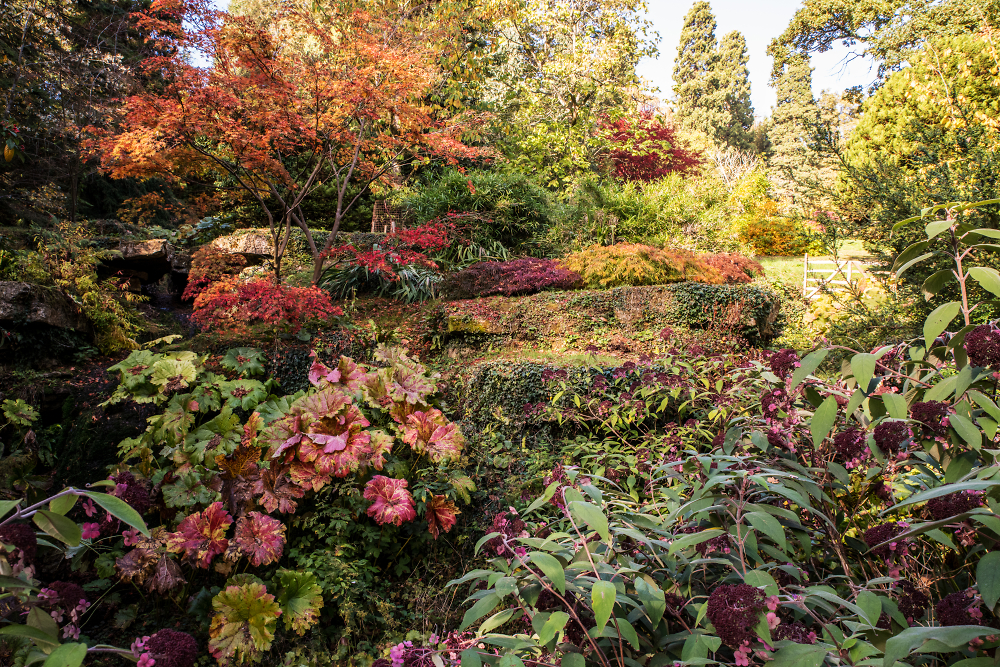 Autumn Steps at Batsford