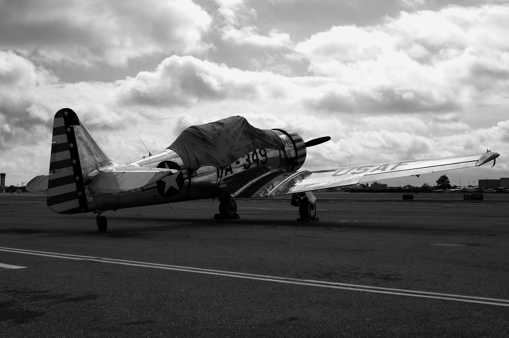 T-6 Texan on the Apron