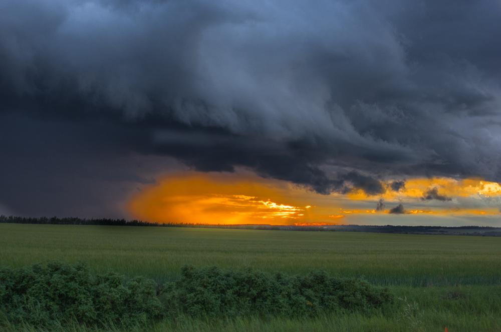 Moody Storm