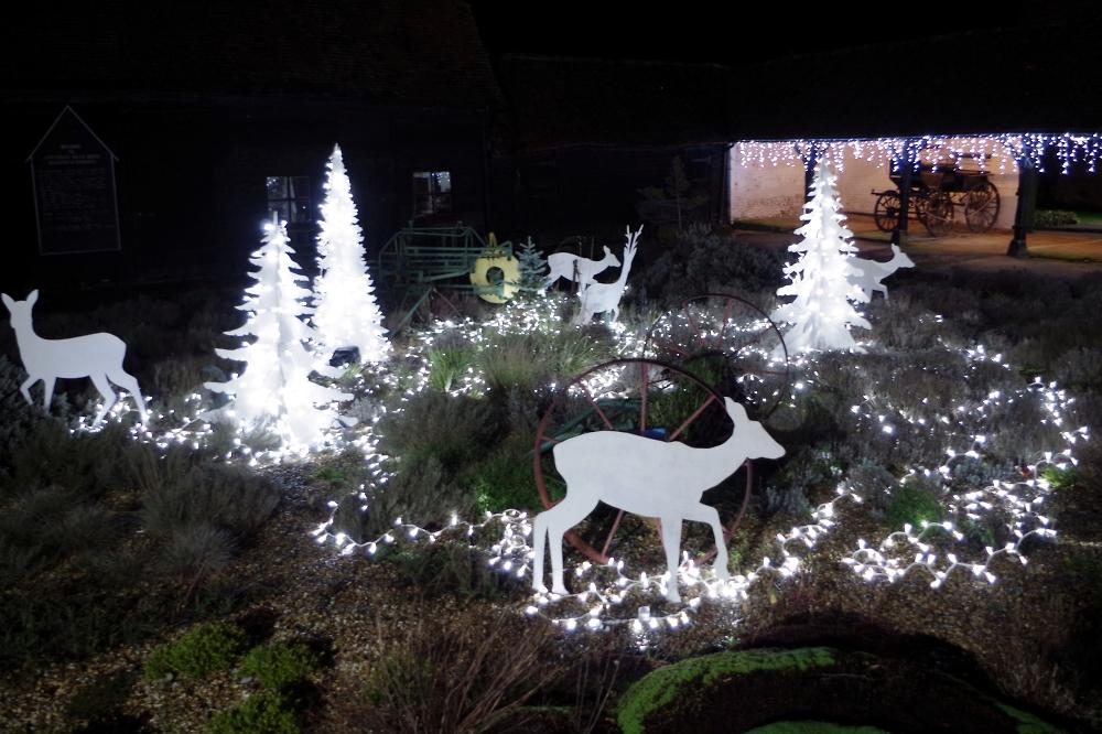 Outdoor Festive Display