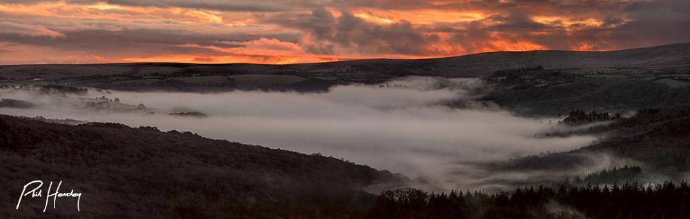 Buckland Mists