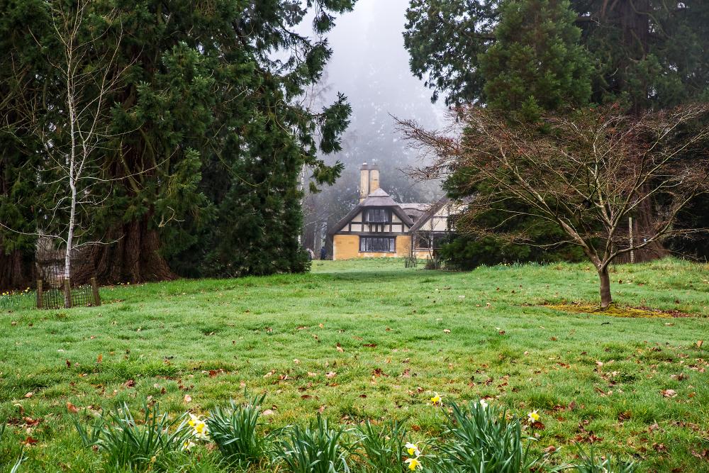 Misty Dairy Cottage