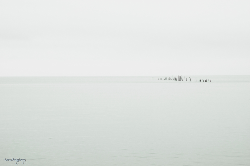 Off the Chesapeake bay bridge