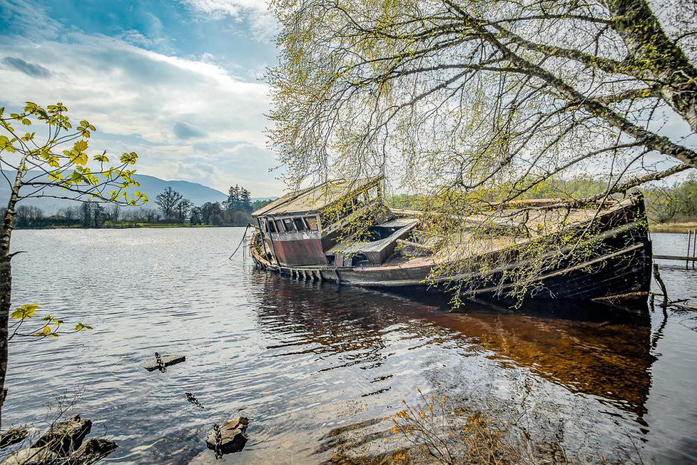 Spring On The Loch