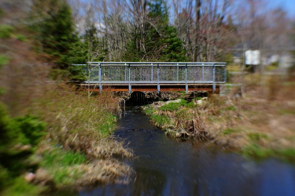 Bridge in Lens Sweet Spot