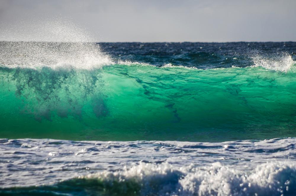 Goldcoast Surf