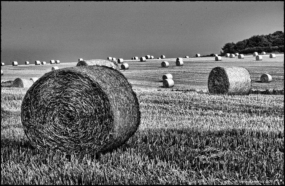 Harvest Bails (mono version)