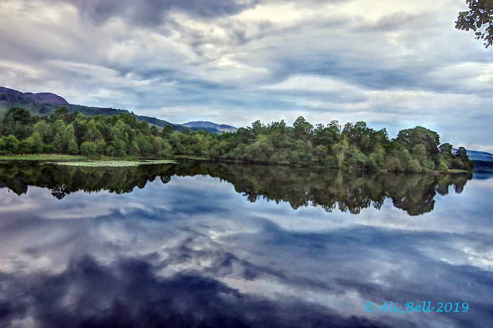 Loch of the Lowes Perthshire Scotland