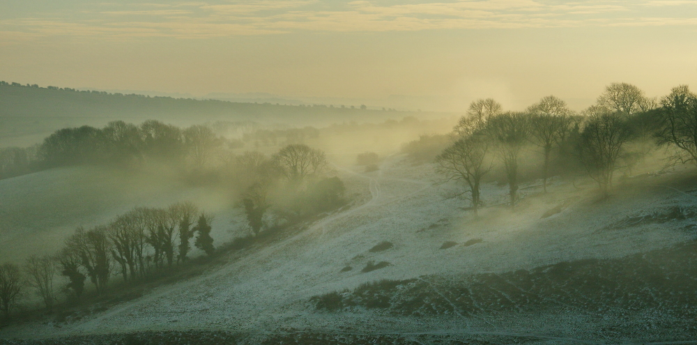 frost & mist