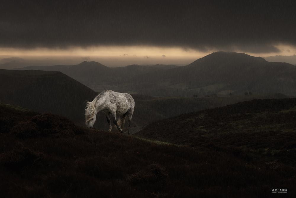 Shropshire White Horse