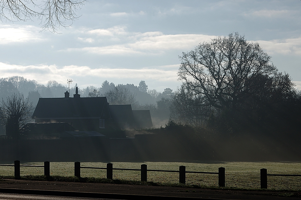 Frost evaporating in the sunshine