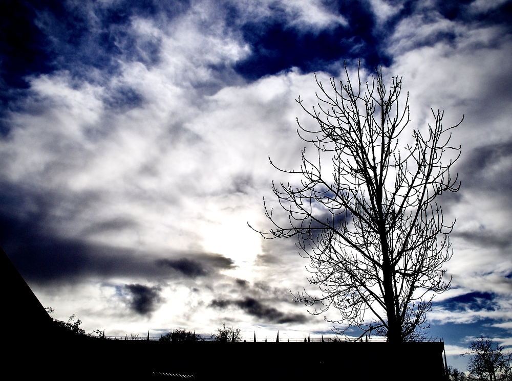 Foreboding with a glimpse of hope….