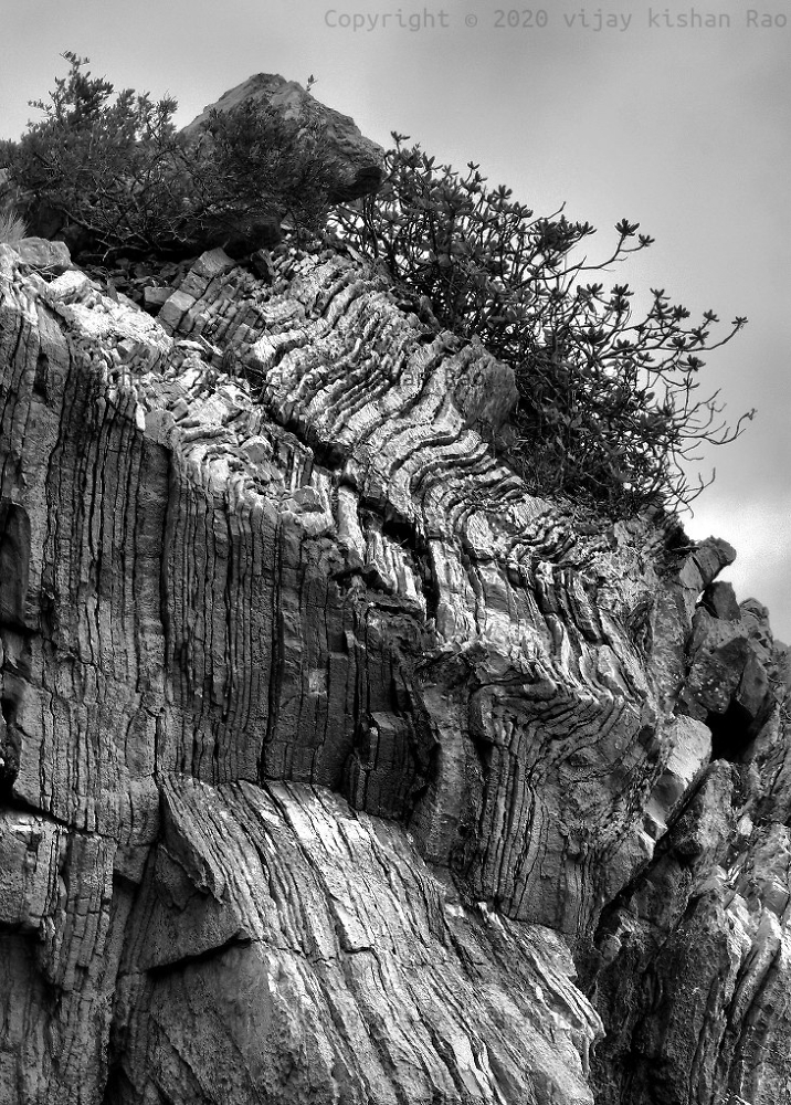 Homage to Ansel Adams