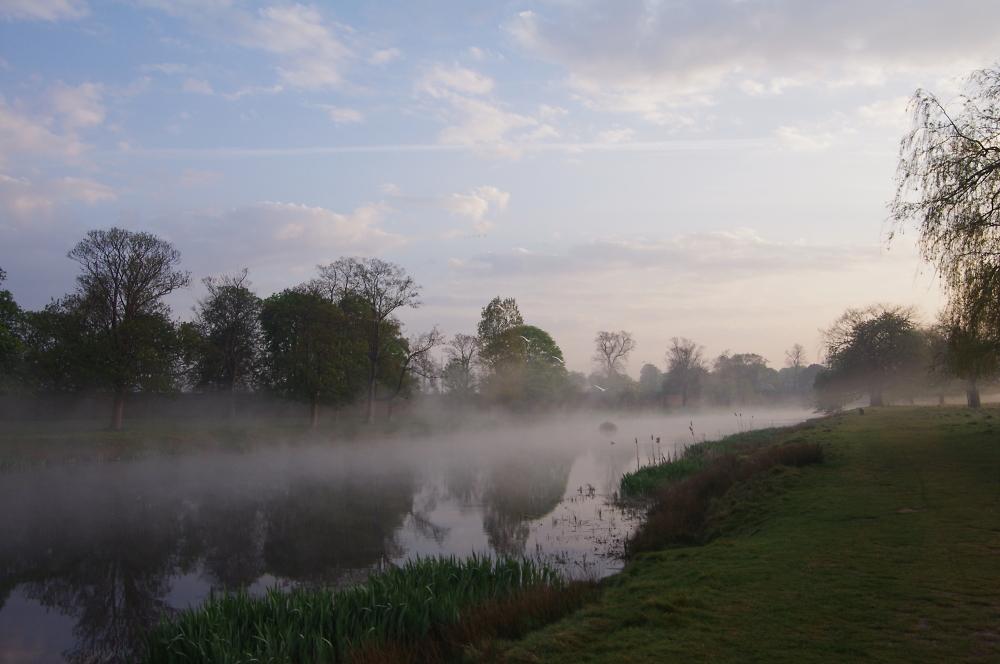 Hampton Wick Pond, Bushy Park