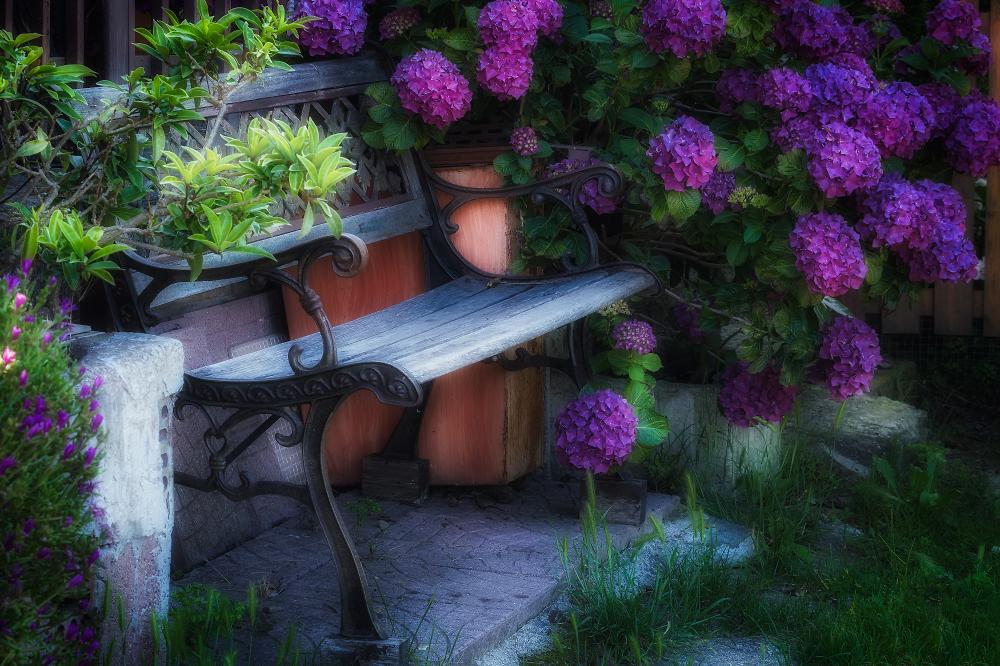 Lovely bench