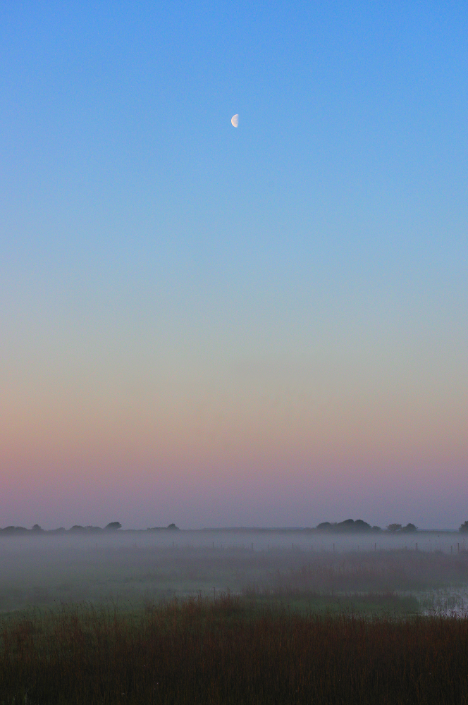 Misty Morning Half Moon