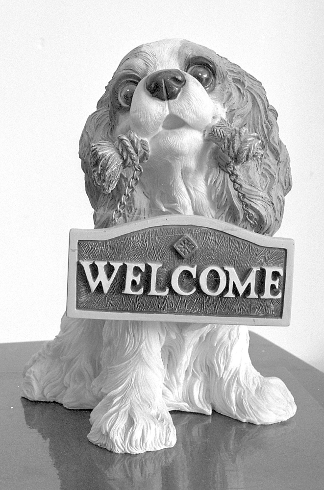'Welcome' !!