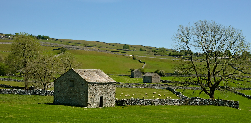 Yorkshire Barns