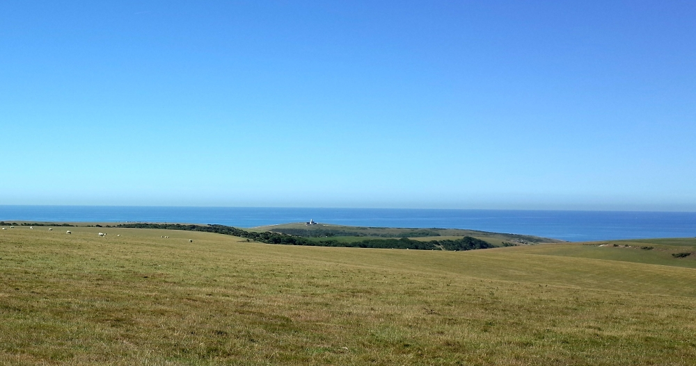 Nice day for a walk on the Downs