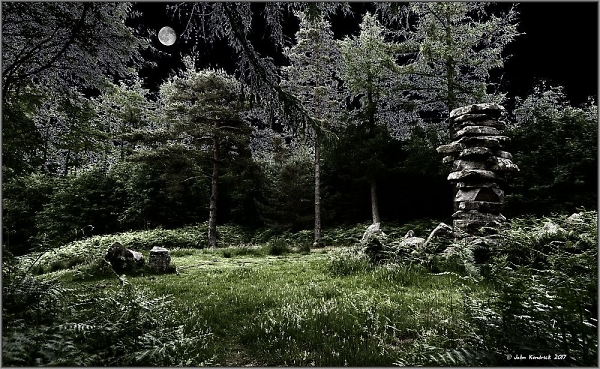 Druid's Forest