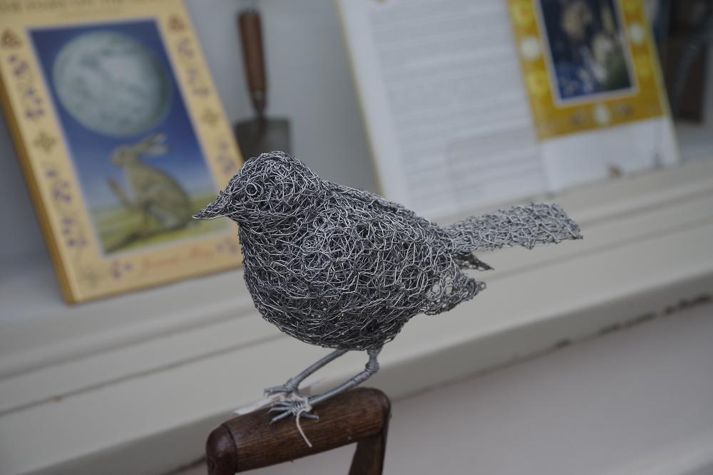 A tame bird