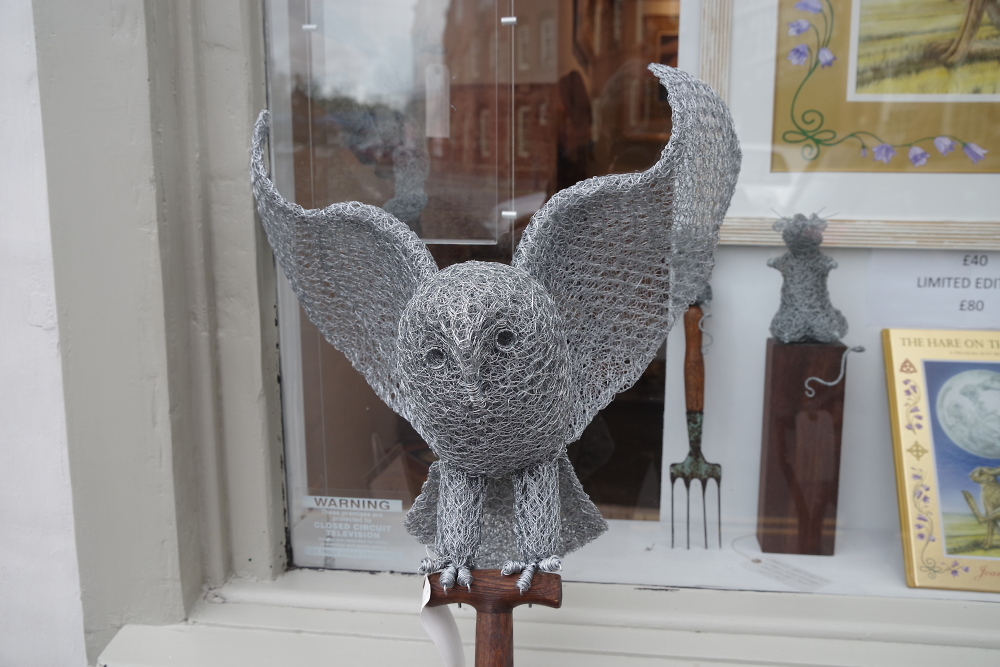Magnificent owl.