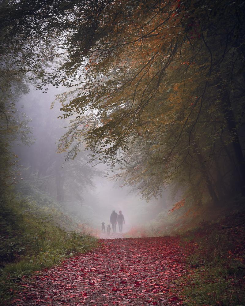 """Walk in the Fog"""