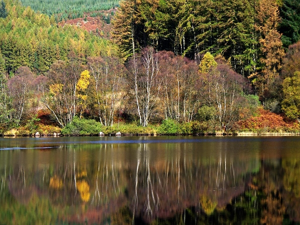 Loch Trool Autumn Reflection