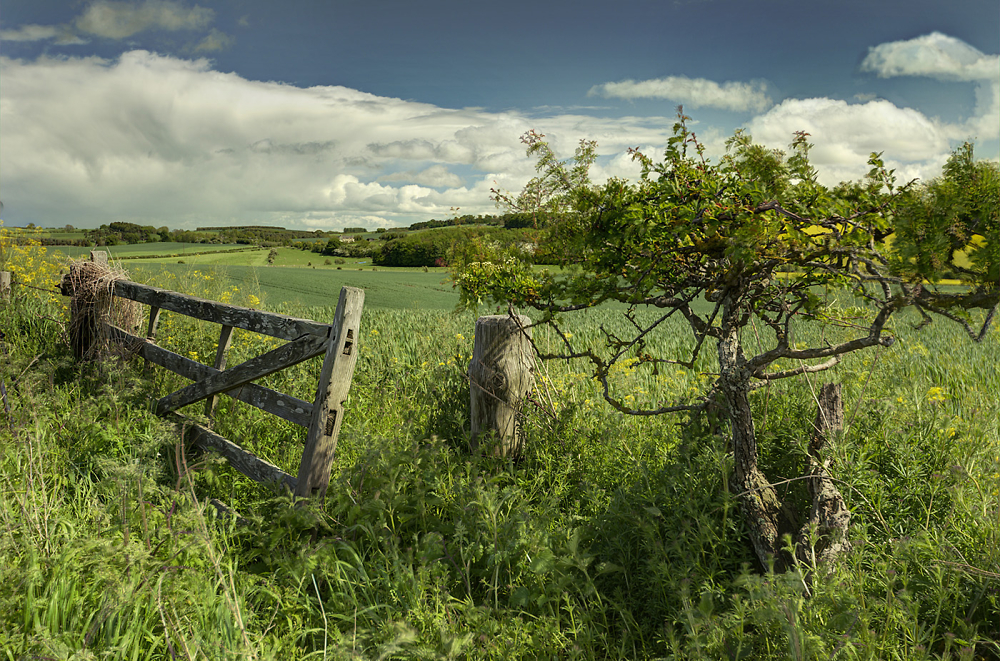 A Gate to Northumberland